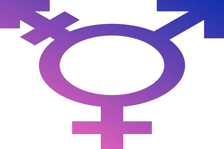 articles on transgenders in india